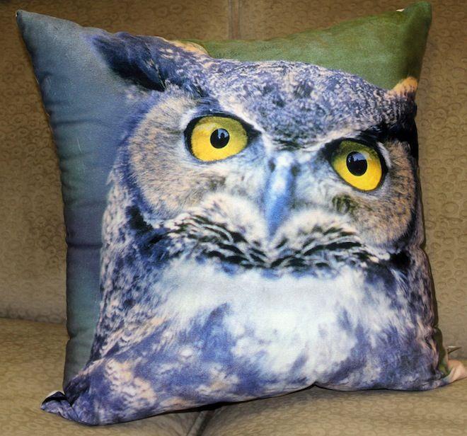 Staring owl cushion in blue  #Cushion | #Owl | #Sale | #BlueCushion | #VelvetCushion |#PhilBee | #Decor | #Melbourne | #Interiors | #InteriorDecorator | #Cushions | #OwlCushion
