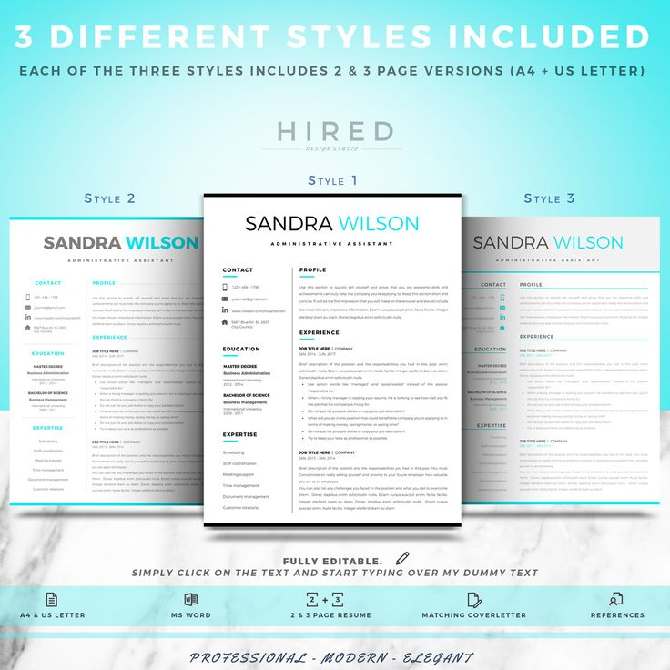 Professional Resume Template For Ms Word 3 Different Styles Icluded One Two    How Do You