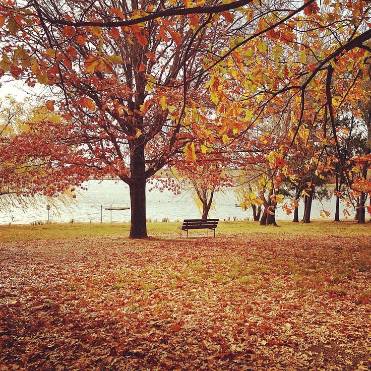 Autumn -Canberra