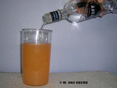 Likeur zelf maken: een fruitige citroclemlikeur likeur zelf maken fruit alcoholische drank bereiden bottelen samenstellen bereiden alcohol bob