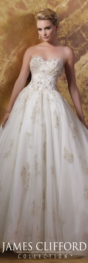 The James Clifford Spring 2015 Wedding Dress Collection - Style No. J11575…