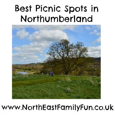 A guide to the best picnic spots in Northumberland