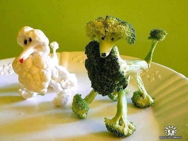 Fun for the kids at dinner time - cauliflower and broccoli poodles!