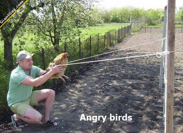 Angry Birds Ghetto Style | Click the link to view full image and description : )