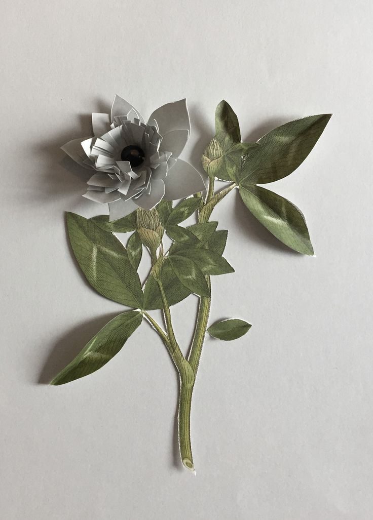 Sketch for paperflowers Littlelot designstudio