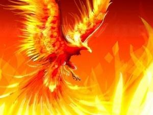 phoenix2: Fantasy, Tattoo Ideas, Phoenix Birds, Phoenix Tattoo, The Ash, Art, Phoenix Rise, Mythical Creatures, Fire