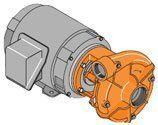 B54576 Berkeley Pump - http://pump.w.pw/b54576-berkeley-pump.html