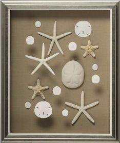 love this idea perfect for displaying found objects custom framing