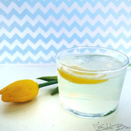 TOM COLLINS Limon suyu+Şeker şurubu+cin+Maden suyu http://evdekibar.com #tomcollins #booze #kokteyl #cocktail #drinkporn #foodporn #soda #gin #simplesyrup #cin #limon #limonsuyu #lemon #lemonjuice #drunk #party #flower #madensuyu #şekerşurubu