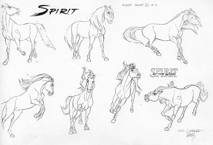 2D Traditional Animation — Spirit - James Baxter ?