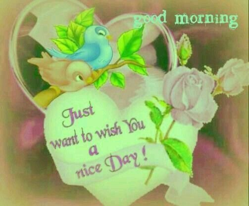 Good morning sister nd yours, wish you a nice day☆♡☆.