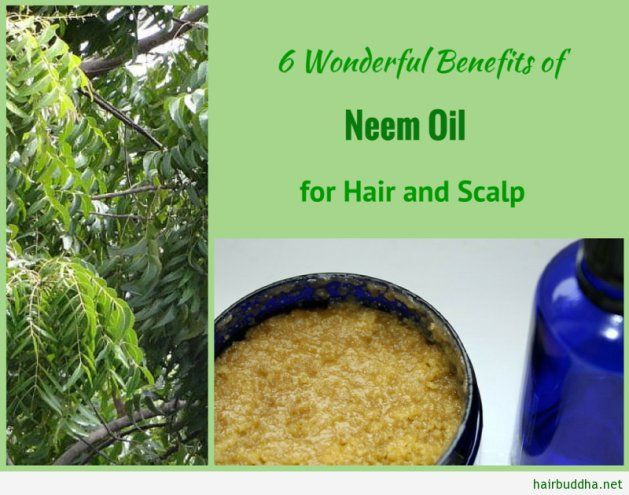 6 Wonderful Benefits of Neem Oil for Hair and Scalp  #NeemOil #HelpswithDryHair #Dandruff