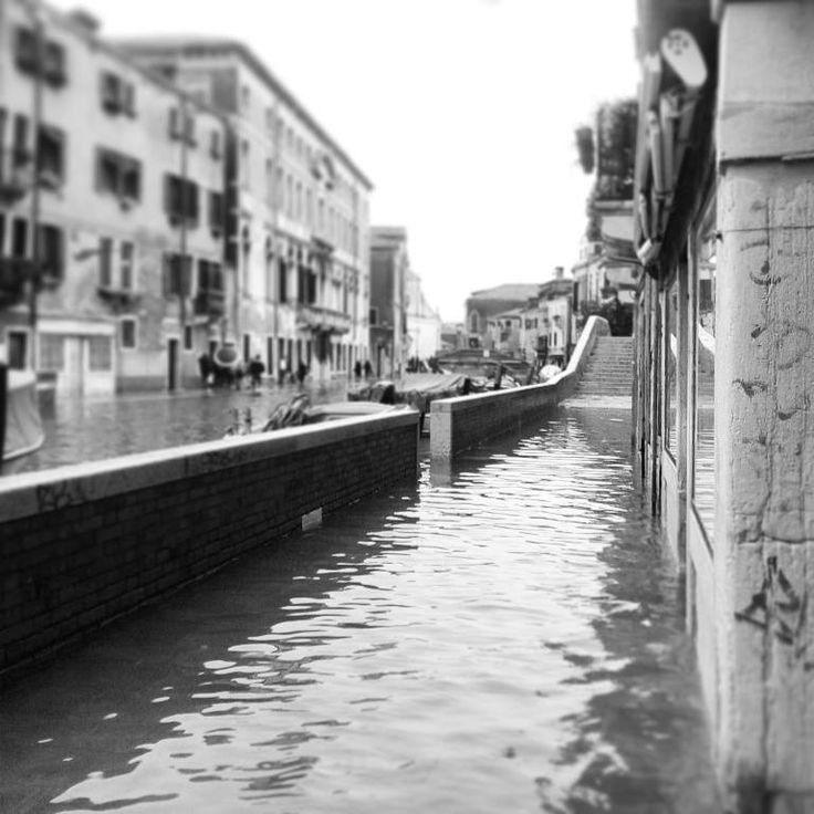 #Venezia con l' acqua alta ! #venice with #highwater