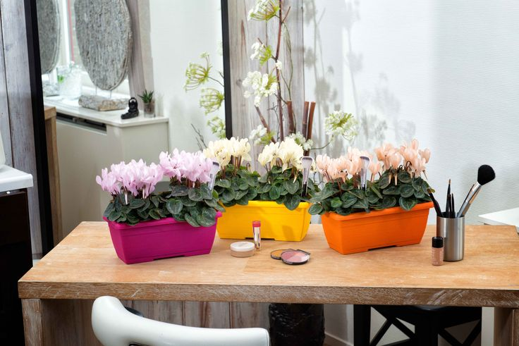 beautiful combinations with Make-Upz cyclamen
