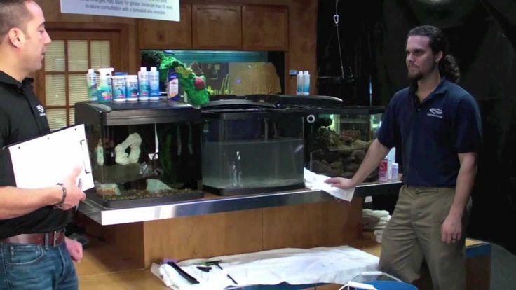 Fish Guy TV Freshwater Aquarium Maintenance.mov https://youtu.be/eIOGP4zhpEc