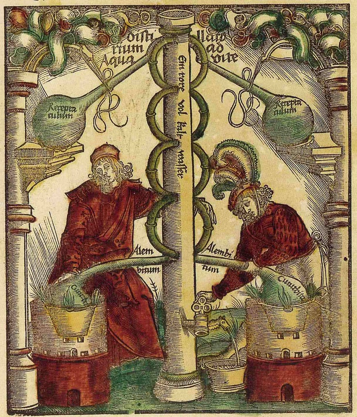Alchemy, depiction of distillation apparatus by Hieronymus Brunschwig, Liber de arte Distillandi (Strasbourg, 1512).