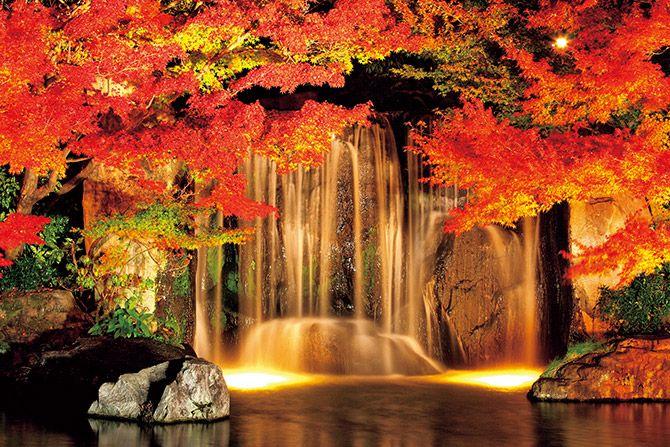 \必見/紅葉の見頃情報満載♪関西近郊の絶景紅葉名所21選【2017年11月】 | エンタメウィーク