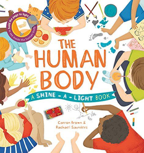 Shine-A-Light: The Human Body by Carron Brown https://www.amazon.com/dp/1610674650/ref=cm_sw_r_pi_dp_x_zJCPybR7JSXYK