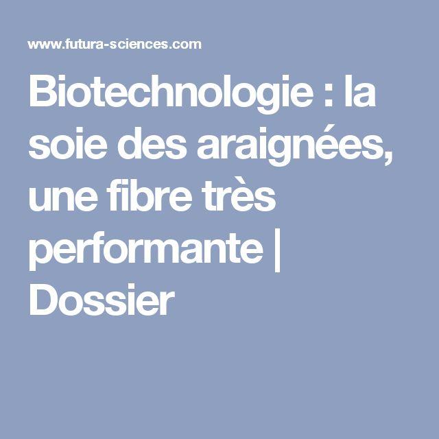 Biotechnologie : la soie des araignées, une fibre très performante   Dossier