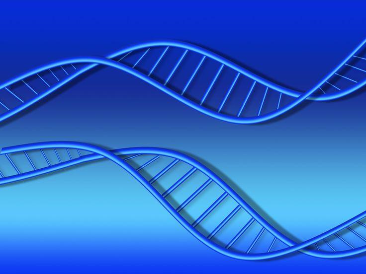 Дремлющая сила ДНК