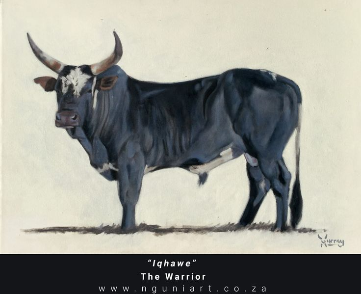 """Iqhawe"" The Warrior Nguni Bull Oil Painting ***New July 2017***"