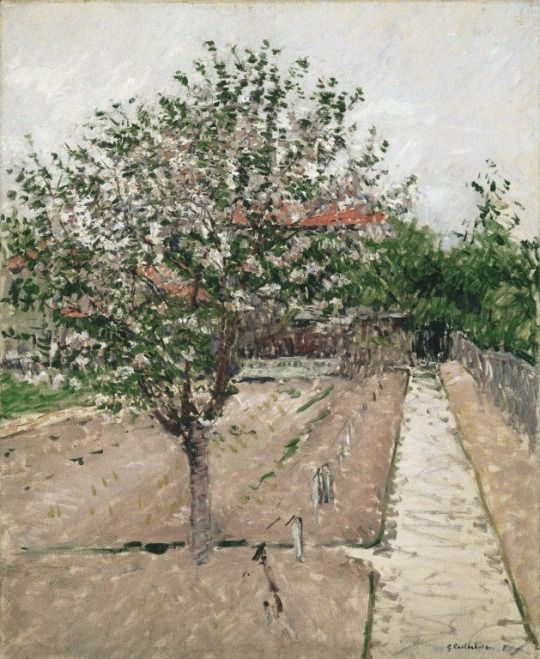 Gustave Caillebotte - Pommier en fleurs, 1885, oil on canvas