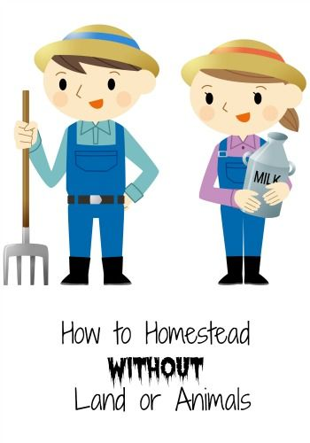How To Homestead Without Land or Animals