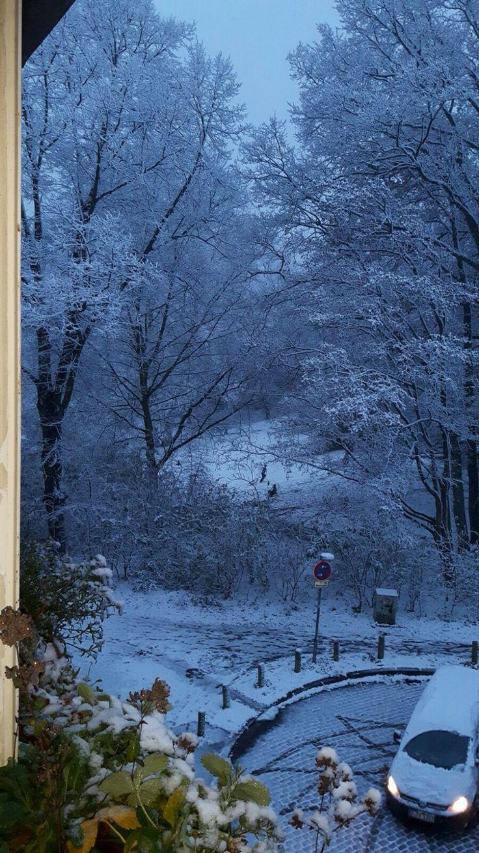 Der Winter Lüneburg