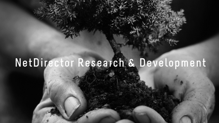 NetDirector Research & Development