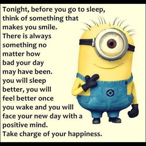Image result for positive minions