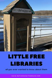 Little Free Libraries could be your closest library