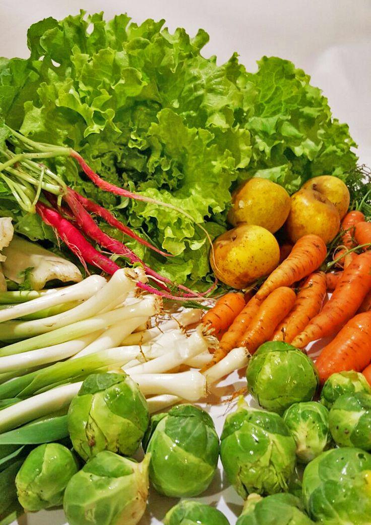 Alcachofas, zanahorias, lechugas, manzanas...Recién llegadas al Restaurante Aitzgorri desde nuestra huerta de Zarautz. Del camplo al plato en pocas horas para que puedas disfrutar de todo el sabor de los productos de nuestra tierra.