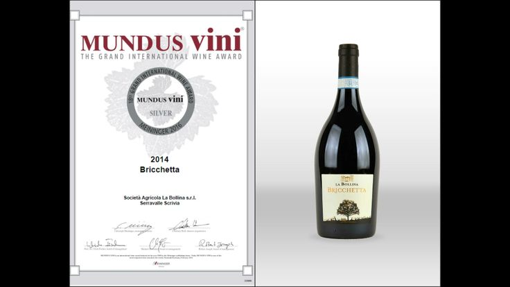 Silver medal -Bricchetta 2014-Mundus Vini