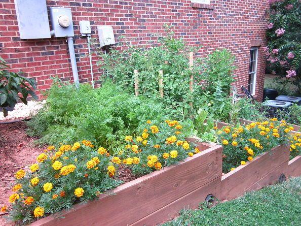 29 best Raised Garden Beds - Slopes images on Pinterest   Vegetable Flower Designs For Raised Garden B E A on