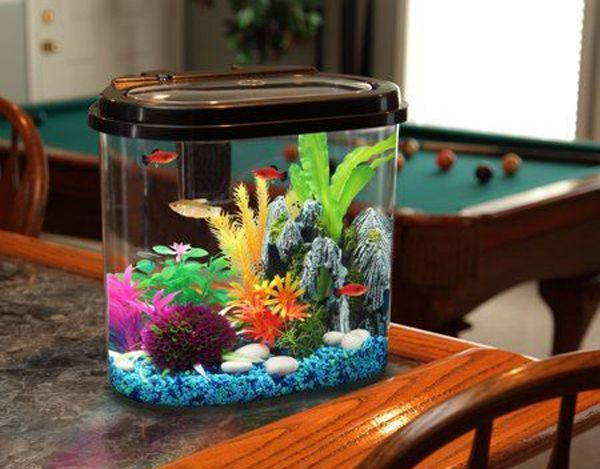 35 Modern Mini Aquarium Designs For Your Small Spaces Aquarium Design Mini Aquarium Cool Fish Tanks