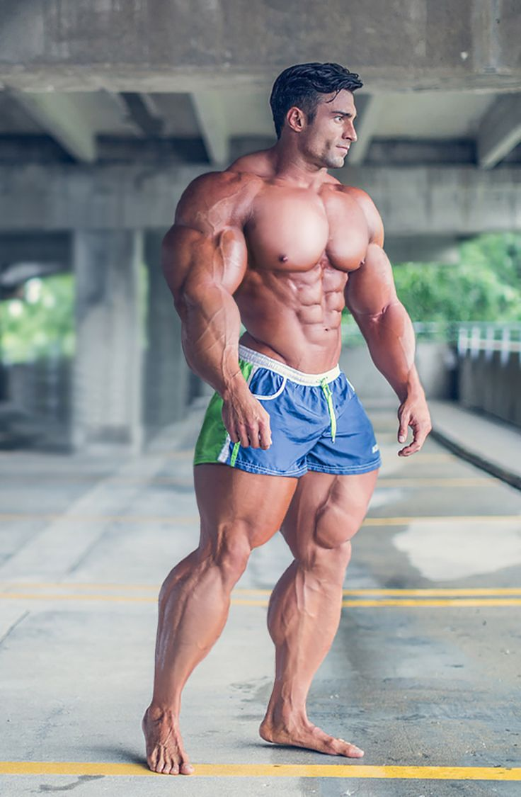 Muscle Morphs by Hardtrainer01 | Shiny Muscles | Pinterest ...