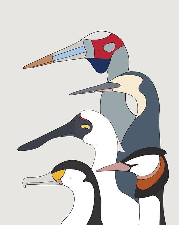 Wetland Birds #eggpicnic #illustration #design #art #partofthesolution #conservation #education #shop #interior #kids #kidsroom #styling #nature #wild #wildlife #healthy #planet #sydney #australia #australiandesign