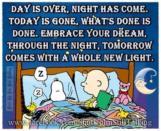 Day Is Over Night Has Come Goodnight Snoopy Quote