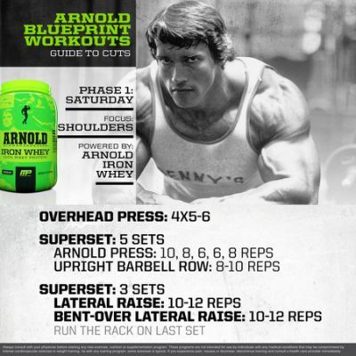 16 best Shoulders images on Pinterest Work outs, Workouts and - new arnold blueprint ebook