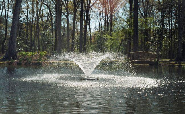gorgeous pond fountain