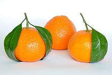 """Mandarin Oranges The name gik (橘 jú) in Teochew dialect is a homophone of """"luck"""" or """"fortune"""" (吉 jí)."""