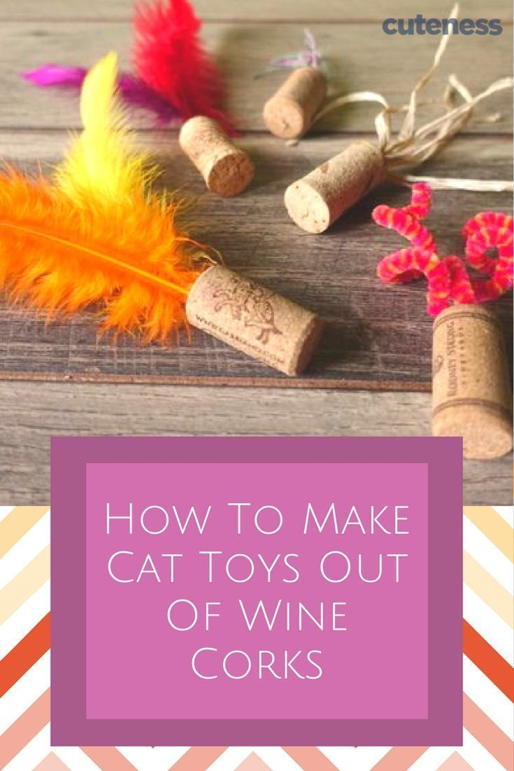 Love wine? Cats have then this is the perfect DIY for you! You will mac …  – DIY Katzen – Inspirationen & Ideen
