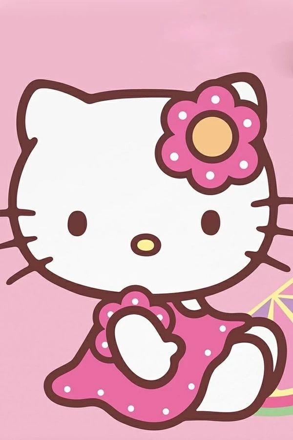 25 creative hello kitty ideas to discover and try on pinterest hello kitty house hello kitty stuff and hello kitty bathroom