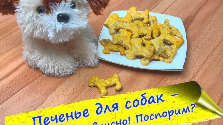 Печенье для собак - полезное, простое и вкусное!