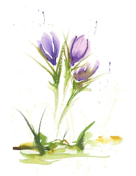 """Crocus Study - Abstract 8.5 x 11"""" Print of watercolor painting by Kate Bauer"""