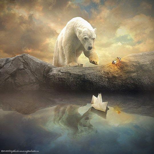 Aaaaahhh / Aaahhww - Waanzinnige fotomanipulatie/ amazing photo manipulation by Even Liu
