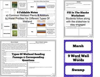 Wetlands: Lesson, Reading Passage, Foldable Notes, Word Wa