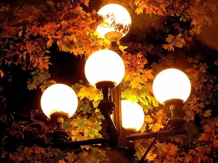 Осенние огни