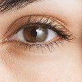 Tips de maquillaje según tu color de ojos: Maquillaje para ojos marrón/miel
