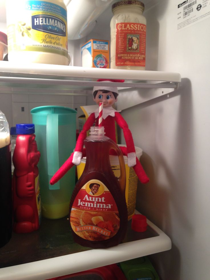 Day 6-Bernard is very thirsty. Pancake syrup is his favourite.